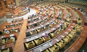 Sindh Assembly provides legal cover to reinstated employees