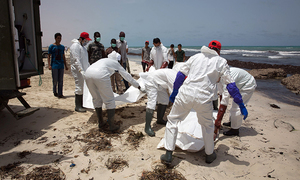 At least 133 bodies recovered from Egypt migrant shipwreck