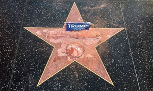 Donald Trump's Hollywood star vandalised