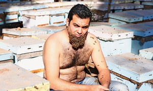 Egyptian man grows 'beard of bees'
