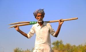 بانو مل اور تھر کے دیگر کسان اداس کیوں ہیں؟