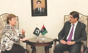 WB promises support for Sindh infrastructure, health projects