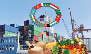 Time to focus on ECO market for food exports