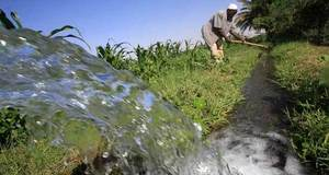 Punjab seeks $130m for improving watercourses