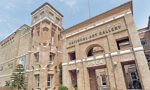FIA initiates inquiry into 'disappearance and theft' of art from PNCA