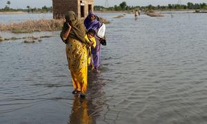 موسمیاتی تبدیلی ایکٹ پر ماہرین کے تحفظات