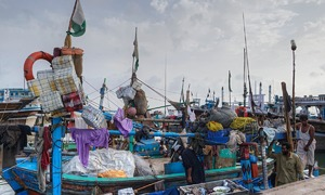 Net loss: How illegal trawling is hurting fishermen and marine life