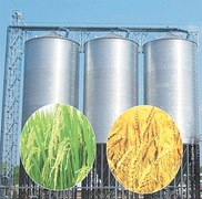 Building grain storage capacity