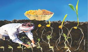 Boosting pulses production