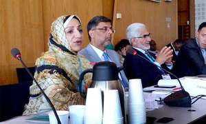 Pakistan's fight against disease outbreaks recognised at world forum