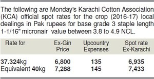 Cotton price steady