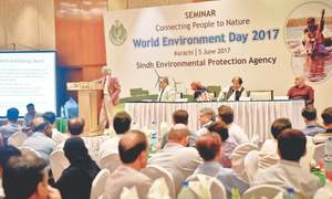 'Environmental laws remain unimplemented due to lack of political will, bureaucratic hurdles'