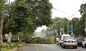 Strong winds, thunderstorm uproot trees in twin cities