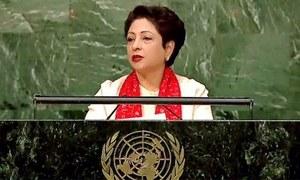 'Safe havens' inside, not outside, Afghanistan, Pakistan tells UNSC