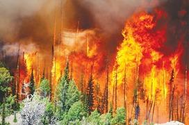Utah evacuees watched flames draw closer
