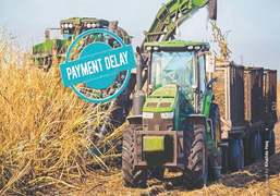 Linking unsold sugar stocks with cane payments to growers