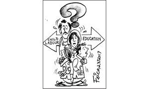 Cartoon: 23 July, 2017