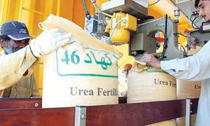 No one is happy with fertiliser subsidy