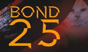 جیمز بانڈ کی 25 ویں فلم میں ایجنٹ کون بنے گا؟