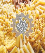 Good news for pasta lovers: durum wheat is coming