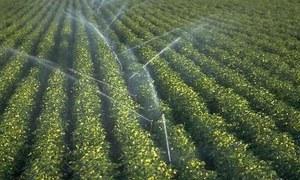 پاکستانی زراعت میں پہلی بار موبائل ٹیکنالوجی کا استعمال