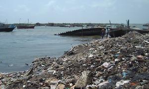 تمر کے جنگلات اور کراچی کے ساحل کی ماحولیاتی موت