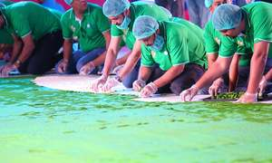 A new Guinness World Record for Pakistan:  largest 'cookie mosaic (flag)' made to celebrate 70 years