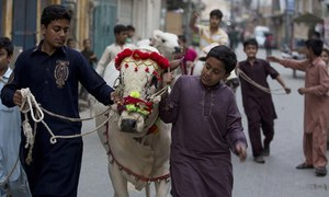 Fears for Eidul Azha economy creep in amid political drama