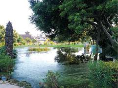 Water accumulated in park renders facility futile