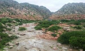 Thar rejoices, Badin panics as spell of heavy rains hits Sindh
