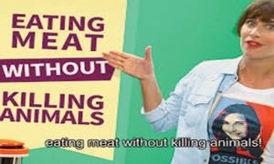No meat to eat in next 30 years?