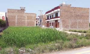 Property boom robs Peshawar of cultivable land
