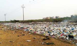 'Plastic-eating' fungus discovered in Islamabad garbage dump