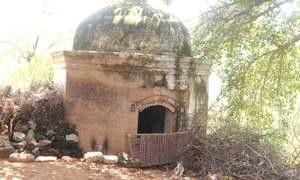 The forgotten twin temples of Malkana