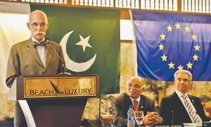 Pakistan among 10 countries enjoying EU's GSP Plus facility, says envoy