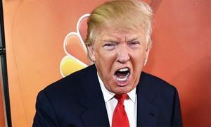 Trump kicks issues to Congress, is 'erratic negotiator'