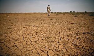 بلوچستان کی خشک سالی سے کیسے نمٹا جا سکتا ہے؟