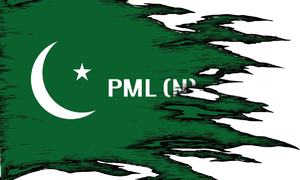 Should PMLN remove the 'N' factor?