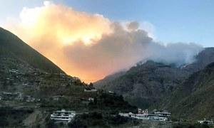 Massive blaze destroys 700 acres of forest land in KP's Shangla district