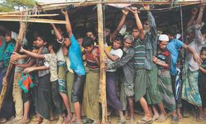 Use UNSC to stop Rohingya killing, Amnesty urges Japan