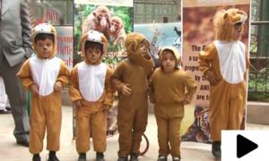 بندروں کے عالمی دن پر رنگارنگ تقریب
