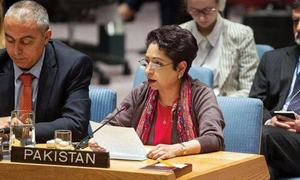 Terrorist safe havens exist in ungoverned areas of Afghanistan, not Pakistan: Maleeha Lodhi