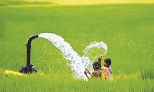 Groundwater — one of the most neglected resources