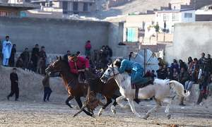 'Beasts of war': Afghanistan's buzkashi horses prepare for battle