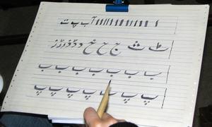 'اردو اپنا قومی کھیل'