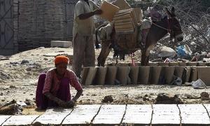 پاکستان میں ہر پانچ میں سے ایک خاتون لیبر فورس کا حصہ ہے، اقوام متحدہ