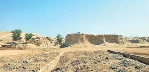Promise to check digging at archaeological site