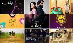 پاکستانی فلمی منظرنامے پر طلوع ہوتے نئے ستارے اور ان کے شاہکار
