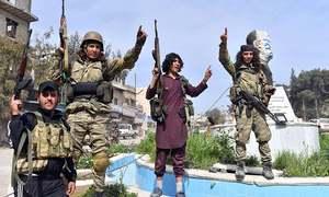 Turkey's Erdogan says Afrin city centre under 'total' control