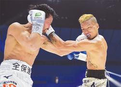 Rosales claims WBC flyweight belt